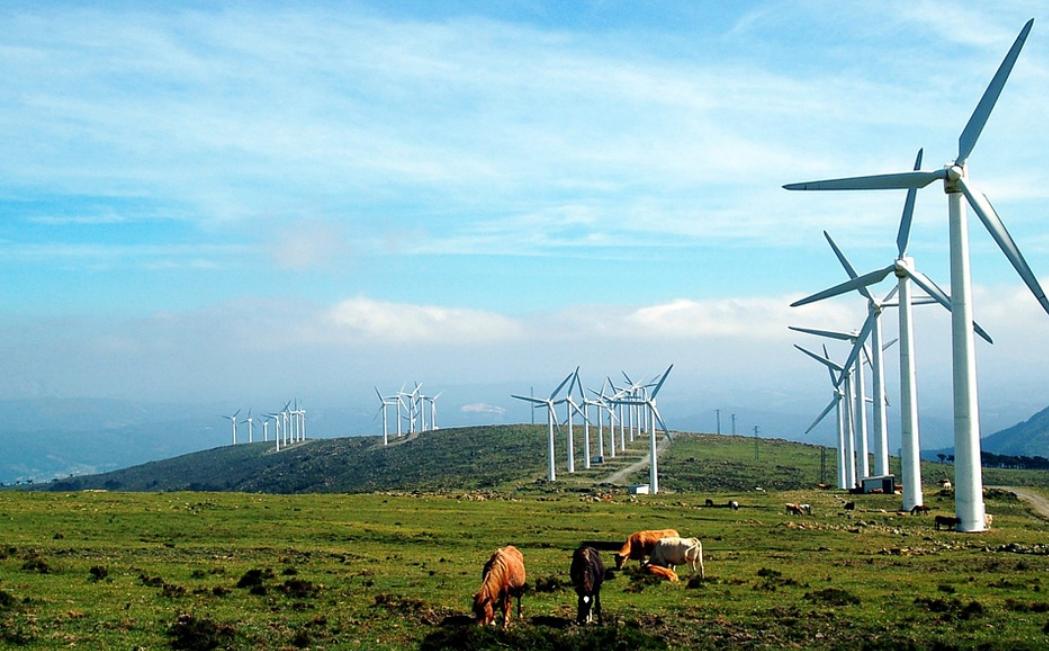 energía eólica - molinos de viento