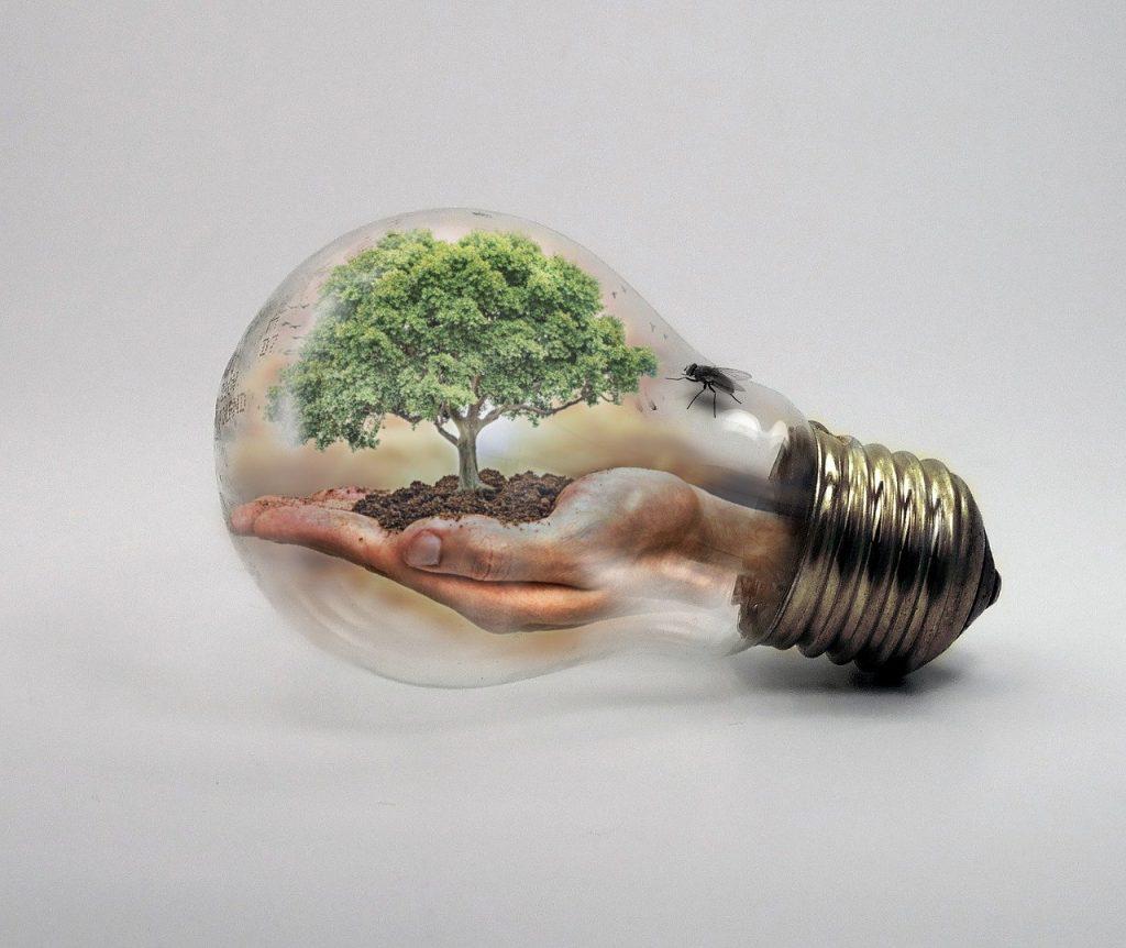 Cuida tu mundo ahorrando energia