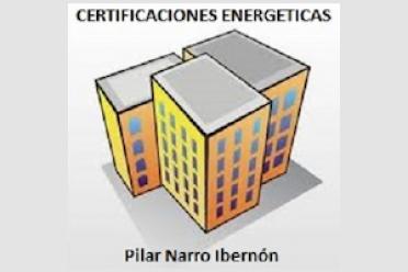 Pilar Narro Ibernón