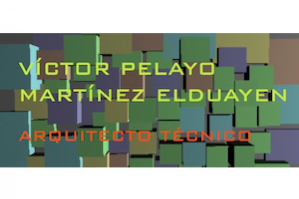 Víctor Pelayo Martínez Elduayen