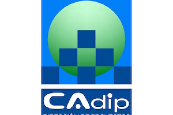 Javier Carrera - CAdip Dirección de Proyectos