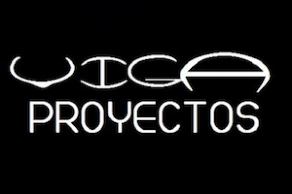 Viga Proyectos