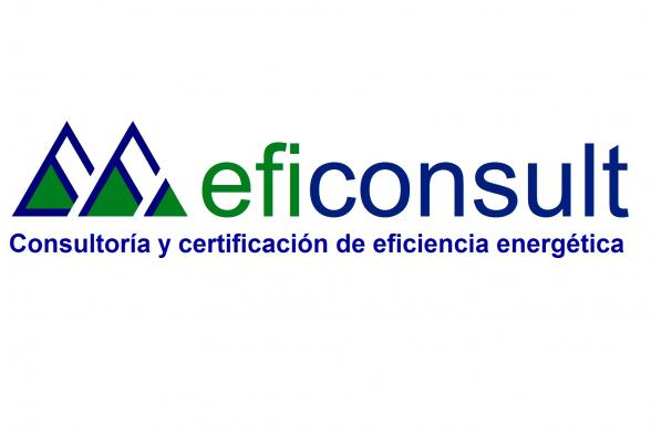 EfiConsult