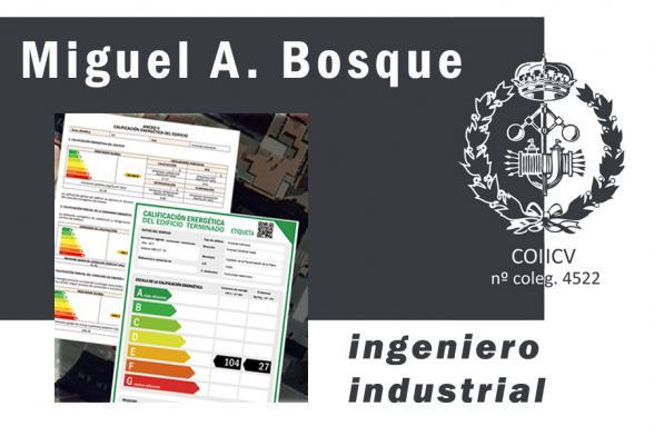 Miguel Angel Bosque