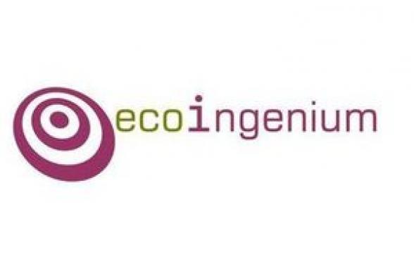 ECOINGENIUM SL