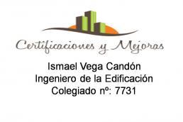 Ismael Vega Candón