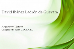 David Ibáñez Ladrón de Guevara
